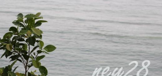Alona White Sand Beach in Bohol, Philippines