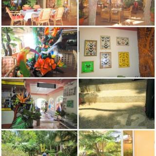 Deep Forrest Inn Palawan Philippines