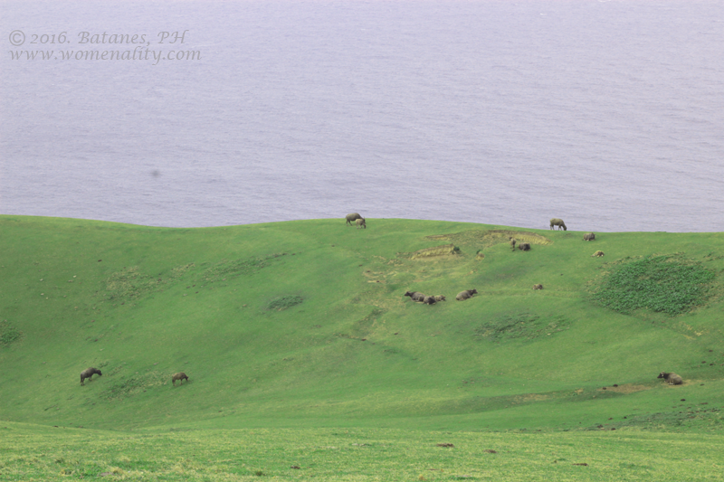 Marlboro Country (Racuh A Payaman) in Batanes, Philippines