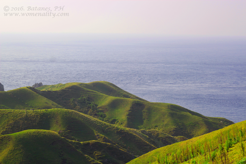 Rolling Hills Batanes, Philippines